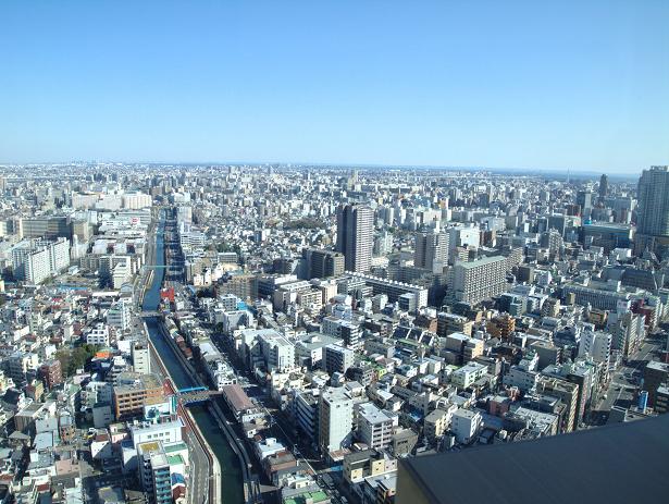 31階の眺め